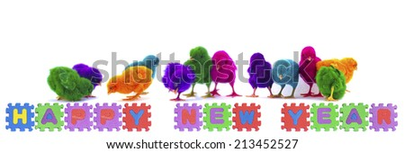colorful of chicks on New Year text stock photo - stock photo