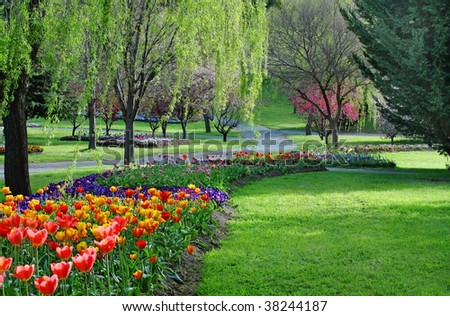 Colorful park in springtime with trees and flowers - stock photo