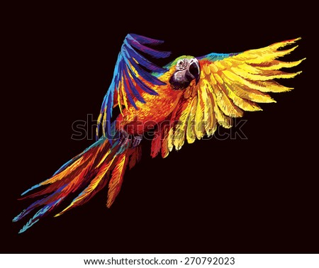 Colorful parrots. Beautiful blue and gold macaw  - stock photo