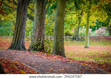 Colorful pathway in a public park in Colchester in autumn - stock photo