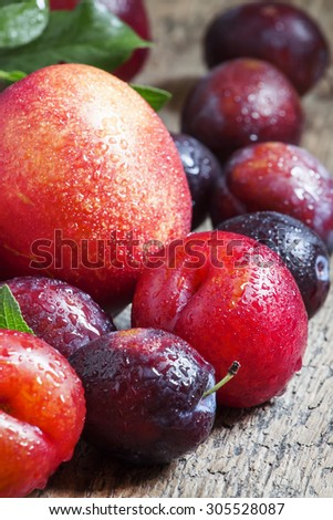Colorful plums and peaches, still life, selective focus - stock photo
