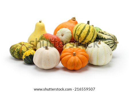 colorful pumpkin and squash collection isolated on white background - stock photo
