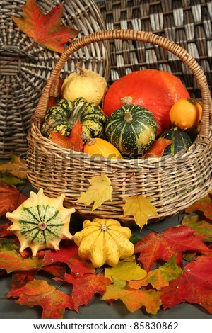 colorful pumpkins in basket with autumn leaves - stock photo