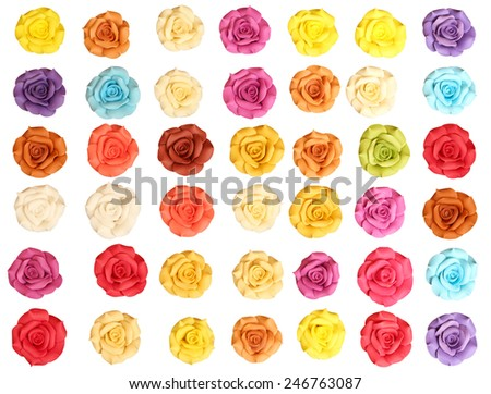 Colorful roses on white background. - stock photo