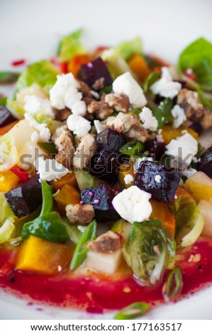 Colorful Salad - stock photo