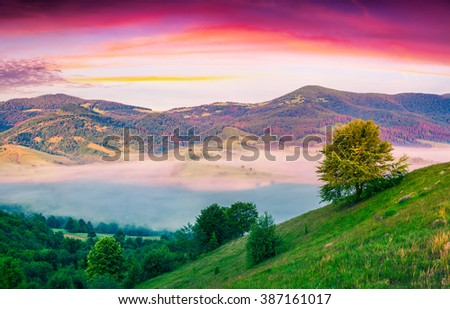 Colorful scene in foggy valley. Dramatic sunrise in the Carpathians. Summer landscape in mountains. Borzhava mountain range, Ukraine, Europe,  - stock photo