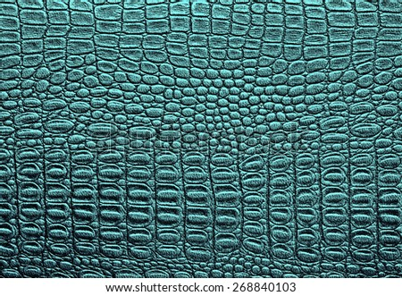 Colorful snake skin, background - stock photo