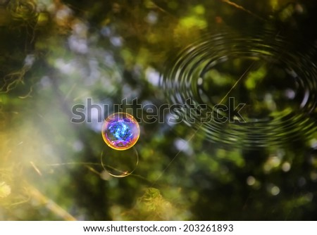 Colorful soap bubble and its reflection on the water surface lit by sunbeams. World Creation / Nature Fragility / Save the Earth concepts. - stock photo