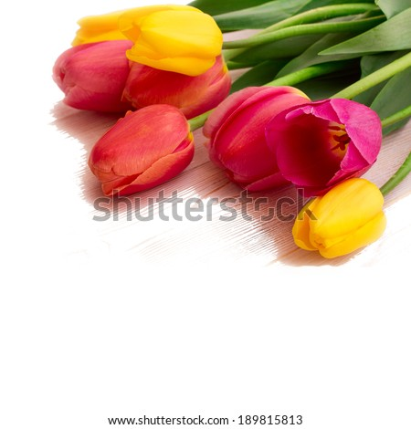 Colorful spring flowers bouquet tulips isolated on white background. Mother's Day holiday, birthday, Easter for card  - stock photo