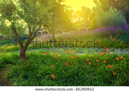 Colorful spring summer park with flowers, green grass and trees - stock photo