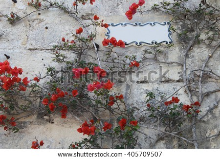 Colorful stone wall with bright flowers - stock photo