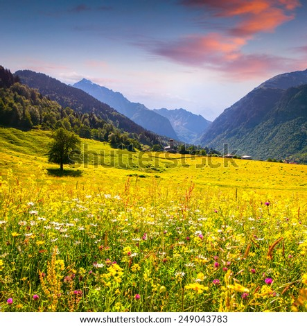 Colorful summer landscape in the Caucasus mountains - stock photo