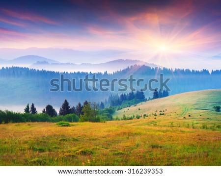 Colorful summer sunrise in the foggy Carpathian mountains. Borzhava ridge, Transcarpathian, Ukraine, Europe. - stock photo