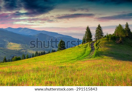 Colorful summer sunset in the Carpathian mountains - stock photo