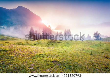 Colorful sunrise in the foggy summer mountains. Triglav national park, Slovenia, Julian Alps, Europe. - stock photo