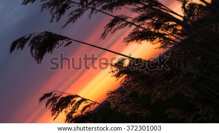 Colorful sunset and intens sky over traditional agricultural landscape in spring - stock photo