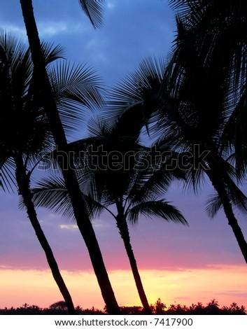 colorful sunset in kihei - maui - stock photo