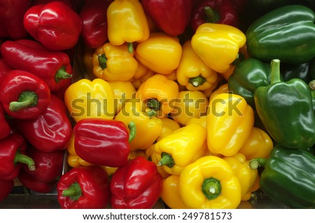 Colorful sweet bell peppers on market for sell - stock photo