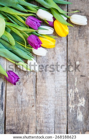 Colorful tulips on a wooden background - stock photo