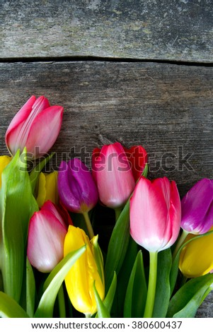 colorful tulips on wooden surface - stock photo