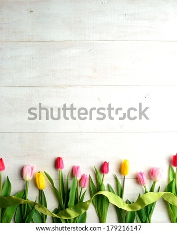 Colorful tulips with yellow green ribbon on white wooden background.Image of spring flowers - stock photo