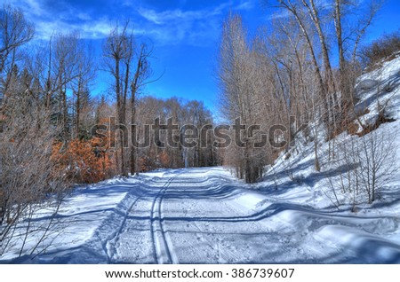 Colorful view of cross-country skiing path in beautiful winter landscape in Aspen ,Colorado with blue HDR sky, USA - stock photo