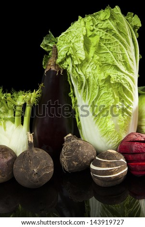 Colorful vivid fresh vegetable still life. Chinese cabbage, black radish, fennel and beet isolated on black background. Healthy culinary eating. - stock photo