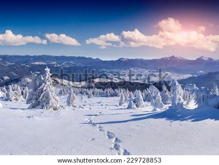 Colorful winter morning in the mountais - stock photo