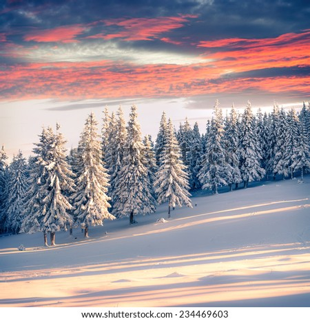 Colorful winter sunrise in the mountains. Retro style. - stock photo