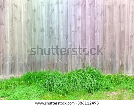 Colorful wood fence have green grasses at bottom look like nest for egg that mean can put object on grass, Wood texture. - stock photo