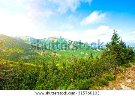 Colorfull nature landscape. Nature conceptual image. Summer in mountains. - stock photo