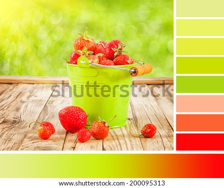 Colour palette with complimentary swatches. Summer strawberry still life - stock photo