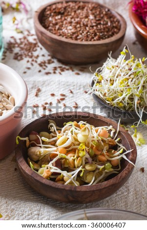 Colourful and healthy crunchy mixed seeds and various sprouts. Focus on bean sprouts, with alfalfa, sunflower seeds, linseed and beet sprouts in the background. - stock photo