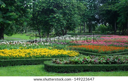 Colourful Flowerbeds  - stock photo