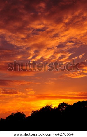Colourful Sky and Forest Silhouette at Sunset - stock photo