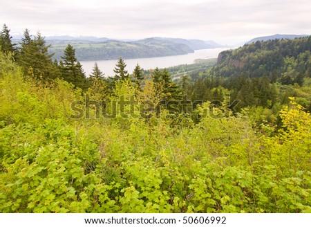 Columbia River Gorge - stock photo