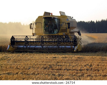 Combine harvester at work  - stock photo