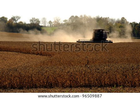 Combine Harvester harvesting crop - stock photo