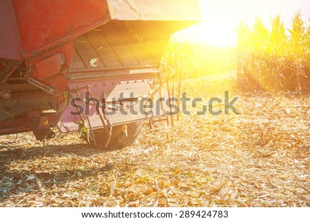 combine harvester on field of maize corn rear view. - stock photo