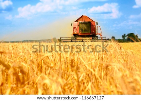 combine harvester working on a wheat field - stock photo