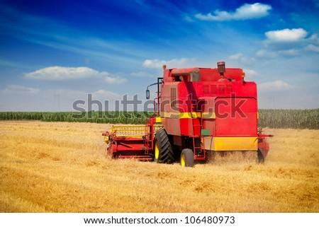Combine harvesting wheat - stock photo