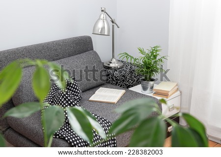 Comfortable place for reading in a living room, decorated with plants. - stock photo