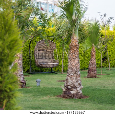 Comfortable swing in a garden among palm trees - stock photo