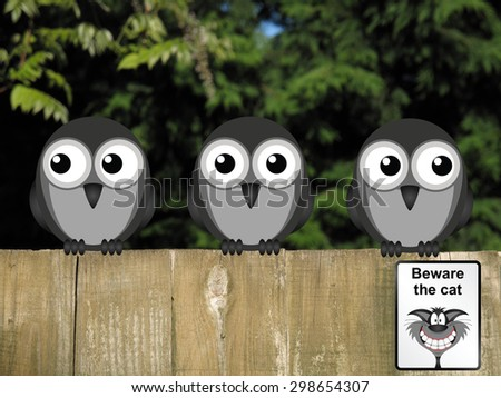 Comical beware the cat sign with vigilant birds on the lookout perched on a timber garden fence against a foliage background                                - stock photo