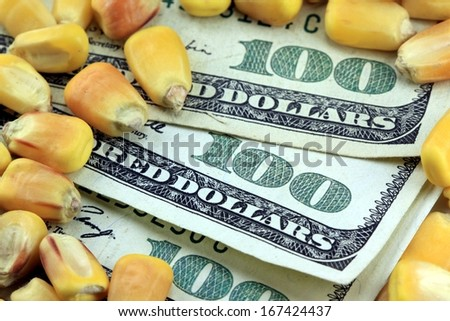 Commodity Trading Concept - US Currency One Hundred Dollar Bills with Yellow Corn - stock photo