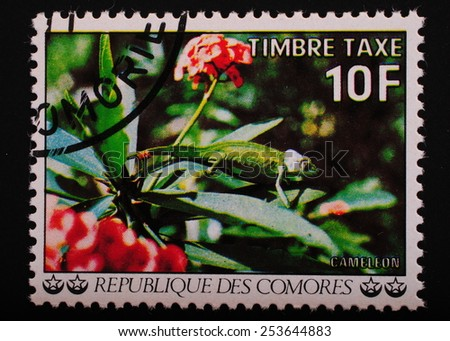 Comoros  circa 1977 year: Postage stamp printed Comoros shows image lizard chameleon on exotic plants - stock photo