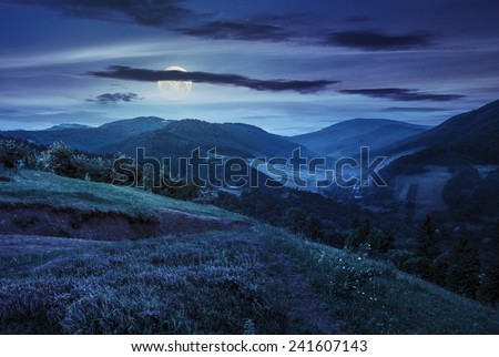 composite mountain landscape. flowers on hillside meadow near village in foggy mountain  forest at night in full moon light - stock photo
