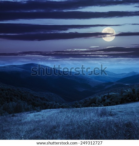 composite mountain summer landscape. trees near meadow on hillside at night in full moon light - stock photo
