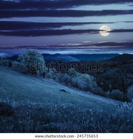 composite rural landscape. fence near the meadow and trees on the hillside. forest in fog on the mountain top at night in full moon light - stock photo