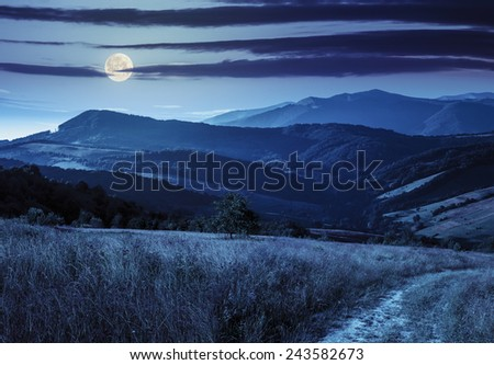 composite rural landscape. meadow path  on hillside with trees near the forest in high mountains at night in full moon light - stock photo